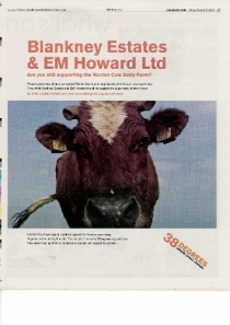 cow advert