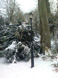 Narnia Lantern in Durham