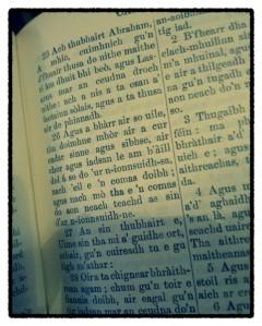 The Bible in Gaelic