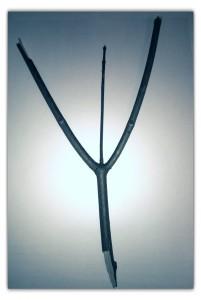 Lomogram_2014-12-12_06-42-57-PM